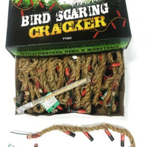 BIRD SCARING